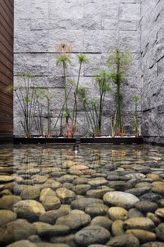 Ideas For Backyard Waterfall Wall Yards Outdoor Water Features, Water Features In The Garden, Modern Landscaping, Backyard Landscaping, Landscape Architecture, Landscape Design, Zen Garden Design, Backyard Water Feature, Water Walls