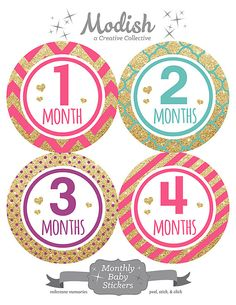 FREE GIFT Monthly Baby Stickers Girl Glitter Hearts by ModishCC