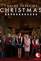 Twelve Trees of Christmas (From my TBS Board) A cute Christmas movie, especially for book lovers. Great Christmas Movies, Christmas Books, Great Movies, Holiday Movies, Christmas Wishes, Christmas Ideas, Beau Film, It Movie Cast, Film Movie