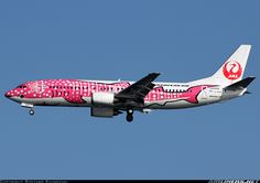 Japan TransOcean Air - JTA JA8992 Boeing 737-446 aircraft picture