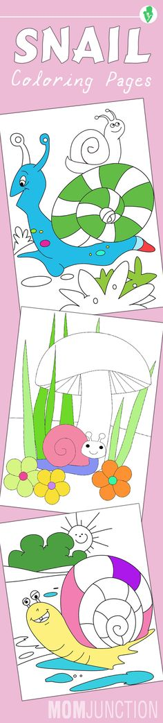 10 Amazing Snail Coloring Pages For Your Toddler: This list of our ten best snail coloring sheets will add an element of fun and excitement to your child's life. Let him pick his favorite shades and get going!
