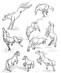 Лошади (эскизы)