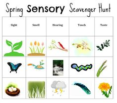 Spring Sensory Scavenger Search incorporating all five senses, including taste! / We didn't do this in such an organized way, but the kids loved finding all of the items.