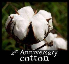 2nd Anniversary: Cotton