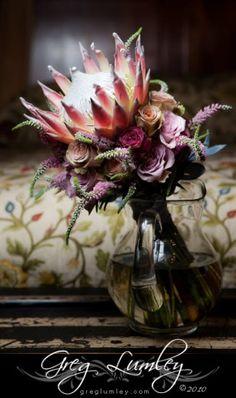 Protea Flor Protea, Protea Flower, Wedding Bouquets, Wedding Flowers, Popular Flowers, Centerpieces, Table Decorations, Painting Inspiration, Floral Arrangements