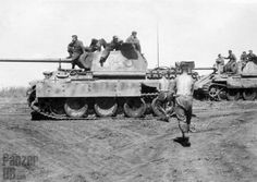 Panther Ausf D tanks during the build up for the attack at Kursk