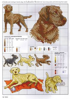 Picture your pet in cross stitch 04 dogs