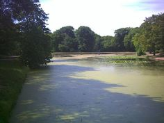 Queen Mere Lake on Wimbledon Common South West London England