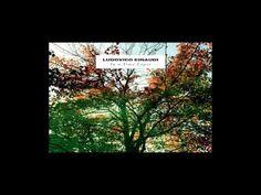 Ludovico Einaudi - Run [HD] - YouTube.  Such talent <3