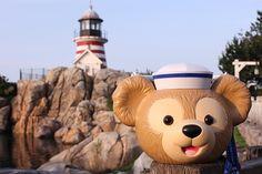 Tokyo Disney Duffy Popcorn   ポップコーンの新フレーバー&ダッフィーのバケットが同時に登場!