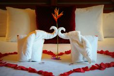 Romantic honeymoon suite setup at the www.ElConResort.com
