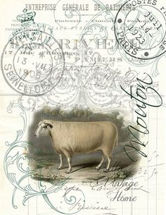 """Original artwork created from vintage bookplates, etchings & papers. Printed in the USA on handcrafted paper 8.5"""" x 11"""""""