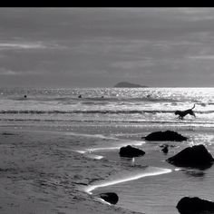 Photograph. Whitesands Bay.