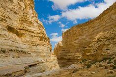 Que el pueblo judio tiene una innegable conexión con la tierra de Israel es algo tan innegable como que su misma toponimia y geografia tiene nombres judíos Judea y su sobrecogedor desierto por ejem…