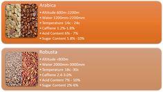 We're setting the record straight on Arabica Vs. Robusta. http://thecoffeekitty.com/what-is-arabica-anyway/?utm_content=buffer4201e&utm_medium=social&utm_source=pinterest.com&utm_campaign=buffer #throwdown #Coffee #Espresso