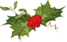 Les 74 Meilleures Images Du Tableau Gui Houx Mistletoe Holly