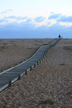 wooden walkway created to protect the rare and delicate plants at the Dungeness nature reserve