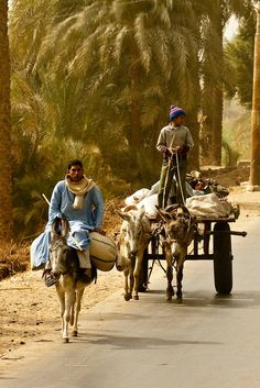 A village near Luxor, Egypt by blaineharrington...blaineharrington photoshelter
