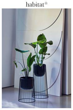 Fall Winter, Autumn, Indoor Plants, House Plants, Habitats, Interior Design, News, Nest Design, Fall
