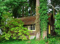 Alberta Rider Log House Tigard Oregon which happens to be right by my house :)