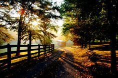 Bluebird Farm on a Fall Morning, Virginia