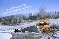 Christmas by karimeijers #nature #mothernature #travel #traveling #vacation #visiting #trip #holiday #tourism #tourist #photooftheday #amazing #picoftheday