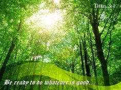 """My Treasure Box"" : PRAY BIBLE PROMISES: TITUS (10)"