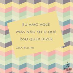 Coisas que não tem explicação. Zeca Baleiro, Lenha. Música, Frases, Letras, Trechos.