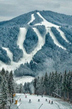 Carpathian Mountains, Bukovel, Ukraine by Alexander Barin- would die to ski…