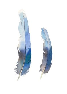 Blue feather print from watercolour painting - vertical wall art made in Australia - poster - peaceful home decor - kids room wall art Watercolor Feather, Feather Painting, Love Painting, Watercolor Print, Watercolour Paintings, Feather Wall Art, Feather Print, Bird Prints, Wall Art Prints