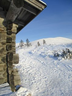 Lokakuinen Pallas Lightroom, Mount Everest, Mountains, Winter, Nature, Travel, Outdoor, Flowers, Winter Time