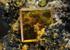 Wulfenite  Rowley Mine (Rawley Mine; Reliance Mine; Reliance Copper Mine; Rainbow Mine; Theba Mine; San Carlos patented claim #4524), Theba, Painted Rock District, Painted Rock Mts, Maricopa Co., Arizona, USA   9.74x8.78 mm perfect Wulfenite crystal with yellow Mimetite crystals. Collection & Photo Matteo Chinellato