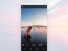 Photo Edit iOS app interaction by Gleb Kuznetsov #Design Popular #Dribbble #shots