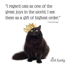 I regard cats as one of the great joys in the world. I see them as a gift of highest order. ~Tricia McCagh