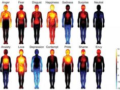 Research Mapping Human Emotions Shows Strong Mind Body Connection - The Mind Unleashed______This is so awesome! that our body shows our feelings! Heat Map, Different Emotions, Human Emotions, Negative Emotions, Negative Thoughts, Emotions List, Body Love, Our Body, Fun Facts