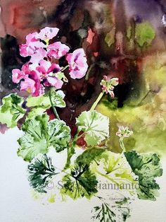 "Sweet Spot Plein Air Geranium, Susan Giannantonio | 20 x 16"" transparent watercolor on paper"