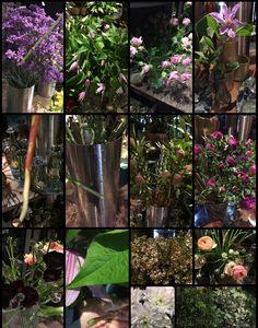 29.11.17 snittet, renset og satte varer i spiral i vase.  Limonium, langt snitt, varmt vann. Climatis, langt snitt, varmt vann. Rosa grenroser, langt snitt, varmt vann. Chrysanthemum, langt snitt, varmt vann. Kongler, langt snitt, varmt vann. Anemone, kort snitt, kaldt vann. Ranunkler, kort snitt, kaldt vann. Voksblomst, langt snitt, varmt vann. Eucalyptus og pistasj, tok av strikk, satte i nytt, rent og varmt vann.  (Varmt vann= ikke så det ryker)
