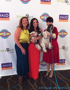 Doodie Pack, Wendy Diamond, Carol Bryant posing before the Awards Ceremony at #BlogPaws #BlogPawsQuotes