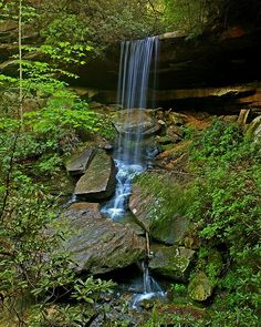 Daniel Boone National Forest