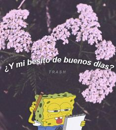Nell :v no existe alv Missing You Love, Sad Love, Cute Quotes, Sad Quotes, Moody Quotes, Tumblr Love, Love Phrases, Wholesome Memes, Love Memes