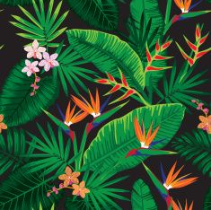 jungle motif fleuri cliparts vectoriels libres de droits jungle pinterest motifs floraux. Black Bedroom Furniture Sets. Home Design Ideas