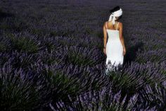 Photo lavender field by Patrizia Starnone on 500px
