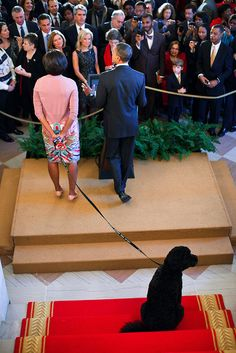 President Barack Obama is joined by First Lady Michelle Obama and Bo, the Obama family dog, as he delivers remarks during a Christmas holiday reception in the Grand Foyer of the White House, Dec. 15, 2010.