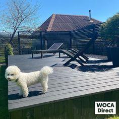 Shiplap Siding, 3 Season Porch, Rough Wood, Exposed Wood, Wood Surface, Outdoor Art, Exterior Doors, Log Homes, Porch Swing