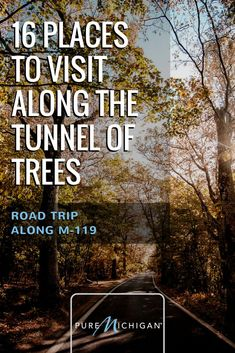 A lush and leisurely road trip down the historic lovingly referred to as the Tunnel of Trees, is a must-see byway in any season! Lac Michigan, State Of Michigan, Northern Michigan, Petoskey Michigan, Michigan Vacations, Michigan Travel, Vacation Trips, Vacation Ideas, Italy Vacation