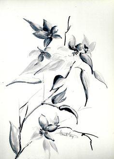 Jasmine flowers ink drawing