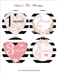 Baby monthly stickers, Girl month stickers, Pink flowers growth stickers, Milestone stickers, Baby Shower Gift, Heart monthly Sticker,  A229 by AnniesChicBowtique on Etsy