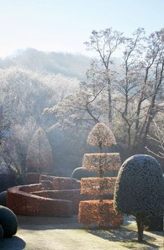 Frost and fire on the Garden Diary today. Photos thanks to and lovely words by Garden Hedges, Topiary Garden, Topiary Trees, Landscape Architecture, Landscape Design, Formal Garden Design, Deco Floral, Formal Gardens, Parcs