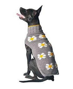 Chilly Dog Daisy Dog Sweater, X-Large * Find out more details by clicking the image : Accessories for dog