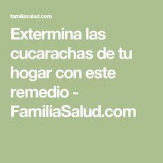 Extermina las cucarachas de tu hogar con este remedio - FamiliaSalud.com